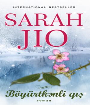 Böyürtkənli Qış – Sarah Jio